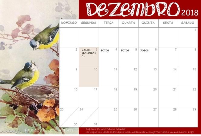 faxinão de fim de ano calendar dezembro